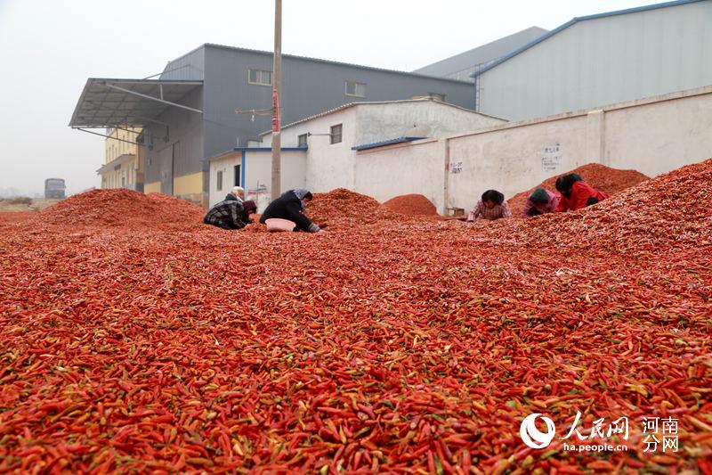 四川人口有多少_渑池县有多少人口